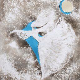 błękitny taniec 2016 lubomir tomaszewski