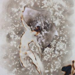 on – he 2016 dym lubomir tomaszewski 48 x 61 cm