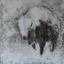 zawieja 2 – 2010 – 61 x 46 cm