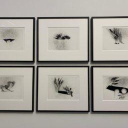 Renate Bertlmann, Defloration, 1977,2018